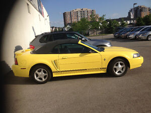 2001 Ford Mustang Detailing Convertible