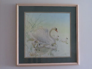 SIGNED GLEN LOATES PRINT – SWAN FAMILY
