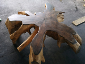 Tree root coffe table