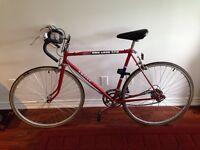 73 Road Bike