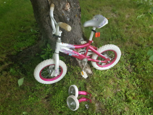 Raleigh -Girls bicycle