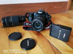 Canon D60 and zoom
