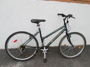 Renegade Hybrid Bike