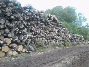 Seasoned Firewood.....Hardwood....