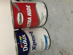 2 gallons of paint