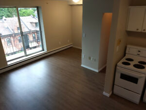 Bachelor / Studio apartment in Corktown - great location