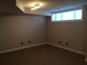 Bright, New 2 Bedroom Basement Suite - Haultain / Broadway Area