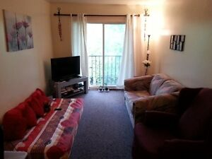 Downtown 1 bedroom apartment - $250 off from 1st month rent