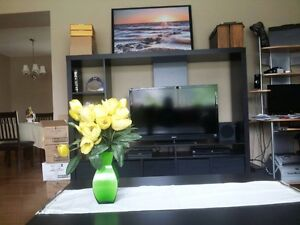 2 Bedrooms available 2 blocks from MRU