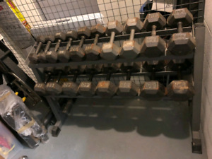 Full Dumbbells Package 10to50 increases 5lb