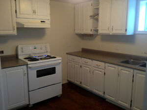 1 bedroom apartment available Nov 1