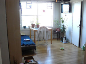 Bright spacious corner 1 bedroom - available Dec or Jan 1st