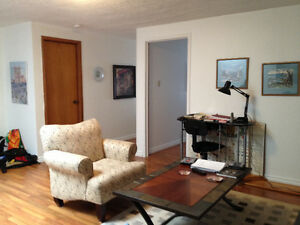 One Bedroom Downtown Milton July1