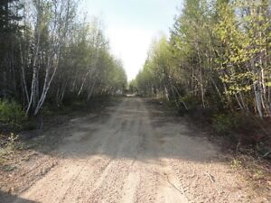 22-25 acres of land in neguac