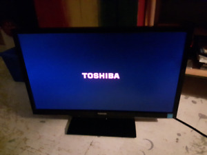 Toshiba 20in flat screen