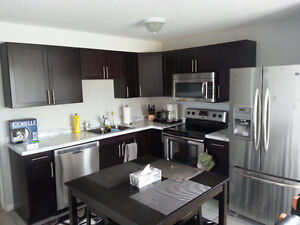2 bedroom walkout all furnished all included MEDWAY PARK DR