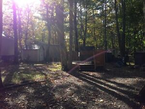 Trailer sites on Pigeon Lake - Camp Fisherman Resort Kawartha Lakes Peterborough Area image 3