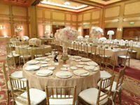 Elegance on a Budget: Wedding Decor, Chairs MORE!
