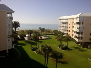 Beautiful condo directly on St Pete Beach available now Dec 4-17