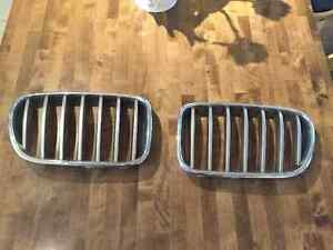 BMW X3 Original Kidney Grille - Genuine BMW