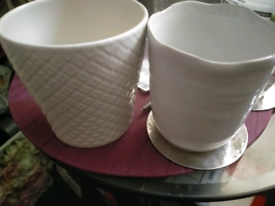Two New Flower Vases
