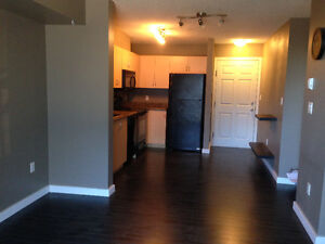 Adorable 1 bedroom +den available immediately Strathcona County Edmonton Area image 1