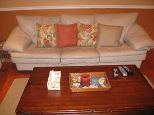 sofa en cuir/leather couches