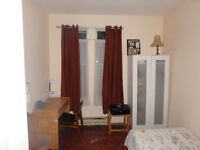 Room fully Furnished 500$ all included Plateau Mont Royal