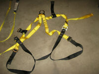 Workman Safety Harness & Lanyard