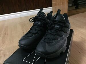 Lebron Low 13 Accepting Trades