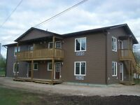 New spacious two bedroom apartment located in Dauphin