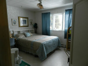 Rooms for rent Bathurst  Chambres à louer-Rooms for rent 285.00