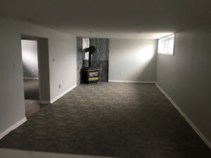 Basement Apartment for Rent in the heart of Richmond Hill