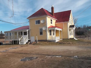2 houses one great price, New Ross , Hobby Farm