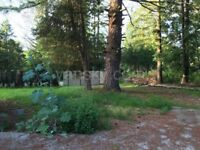 $2200 / 3br - Nice house with five acres in Mission for rent