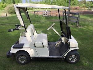 Yamaha Golf Cart & Trailer