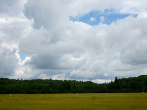Secluded Acreage Adjacent To Private Airfield/Crown Land