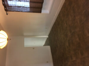 Downtown- large 1 bedroom   heat/light included!