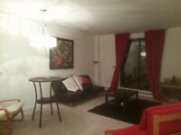 For Rent - Furnished 1 Bedroom Apartment by Government buildings