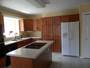 Kitchen Cabinets, Oak w/counters, dbl sink, appliances