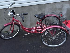 schwinn three wheel bike