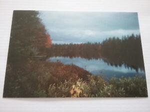Chalet avec lac prive 99000.$