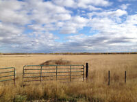 Great Lot on the way to Pipestone Creek!