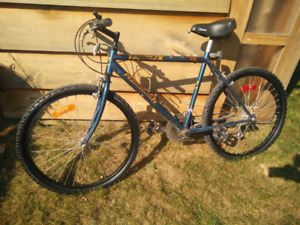 18 speed mountain bike