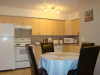 Furnished 2 bedroom condo in University Heights $750/W(7nights)