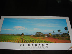 beau cigares poster affiche from Cuba Cigars poster
