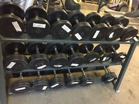 Pulse fitness 5-30kg rubber dumbbell and rack