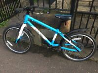 Frog 55 Kids Bike, Excellent Condition, Team Sky Special Edition