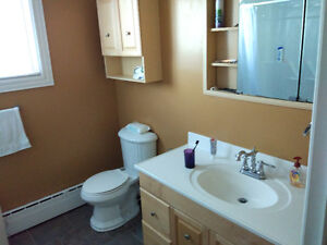 Bus to MUN and Village, clean and warm house, room for rent St. John's Newfoundland image 4