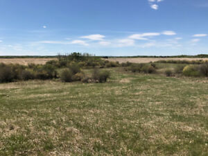 25 Acres with Creek in Lac St Anne County